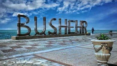 3497 390x220 - بوشهر ، میزبان اختتامیه تور بزرگ کایت بردینگ 1400 شد
